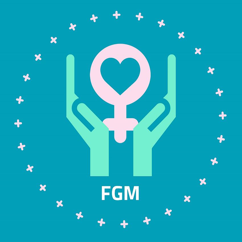 Library edu fgm+thumb
